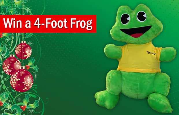 Win a 4-Foot Frog | Be...