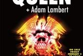 queenlamber