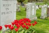 Vandals Knock Over 170 Headstones in Jewish Cemetary