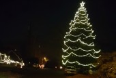 Crazy Cool Christmas Tree in Linwood!