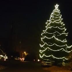 Northfield-Christmas-Tree.jpg