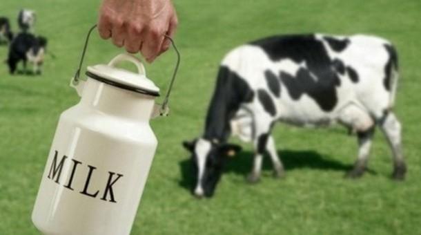 Irish-50-post-quota-milk-production-increase-forecast-wildly-optimistic-USDEC_strict_xxl