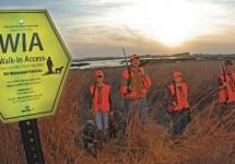 WIA Hunting