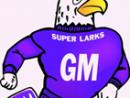Grand Meadow Superlarks