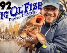 Big_Ol_Fish-flipper-620x400-v2