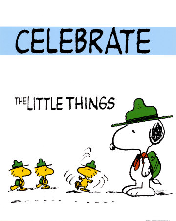 charles-schulz-peanuts-celebrate-the-little-things