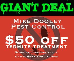 Mike Dooley deal