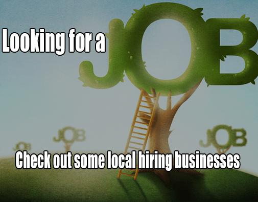 Online-Job-Fair-2016-505