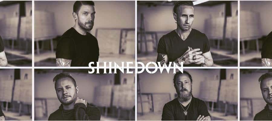 Shinedown-flip