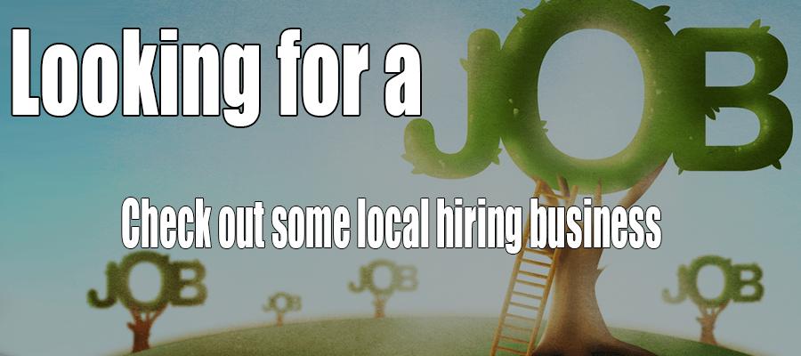 Online-Job-Fair-2016-900