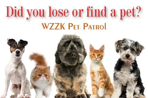 pet-patrol