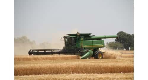 Wheat harvest 500 X 270