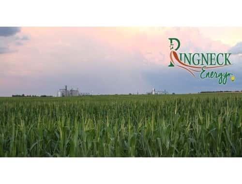 Ringneck Energy 500 x 380