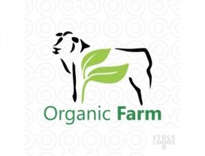 Organic farming 500 x 380