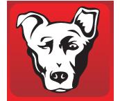 Alpha Dog 2