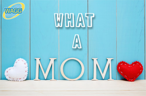 what-a-mom_wagg