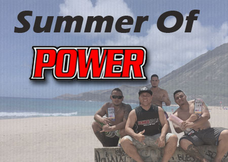 Summer Of Power Flipper