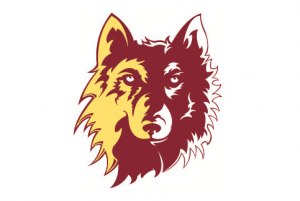 NSU Northern State University Wolves 11