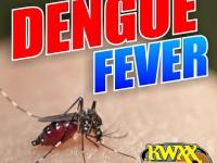 DengueFever_KWXX