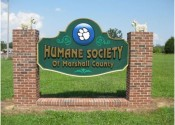The Humane Society now offers Adoption Ambassador to see what a dog is like with a foster parent.