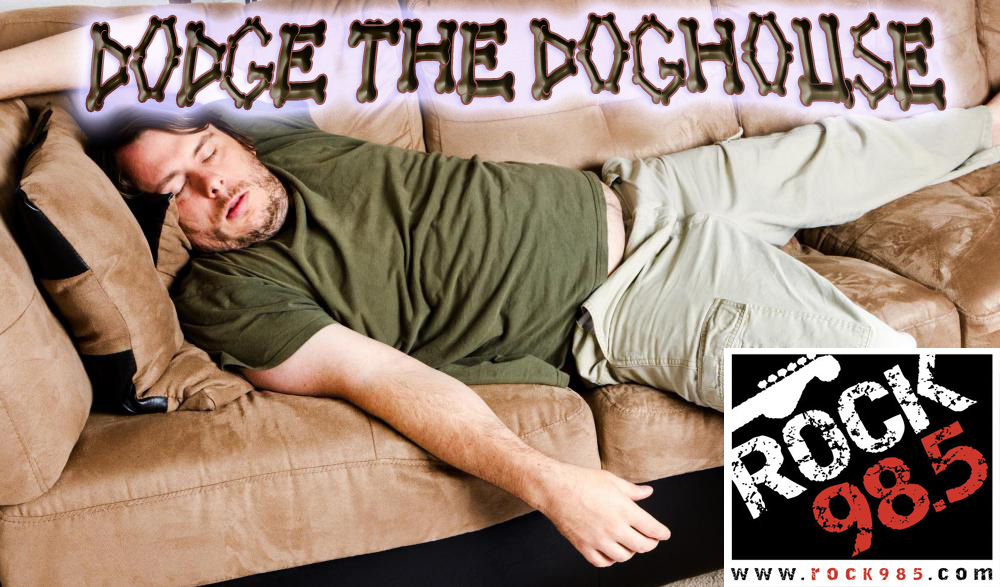 dodge the dog house