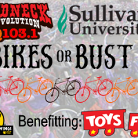 bikes or bust web