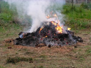 Burning Yard Waste