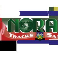 NORAD-Santa-Tracker-Logo