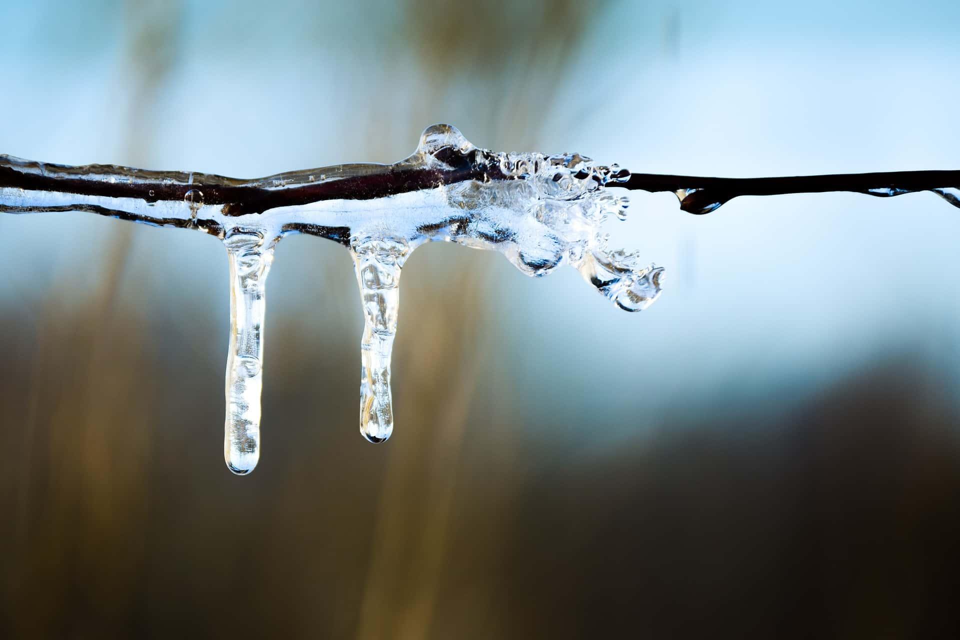 icicle-1655349_1920.jpg
