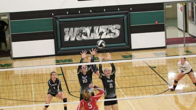 Wolves VB 5