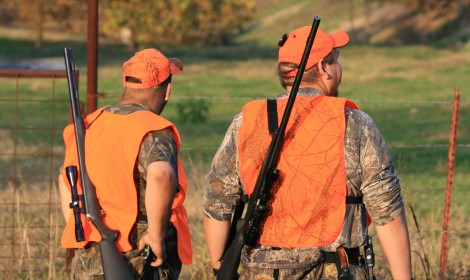 Iowa's youth deer season begins September 17