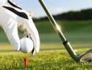 Golfing in the Ozark's