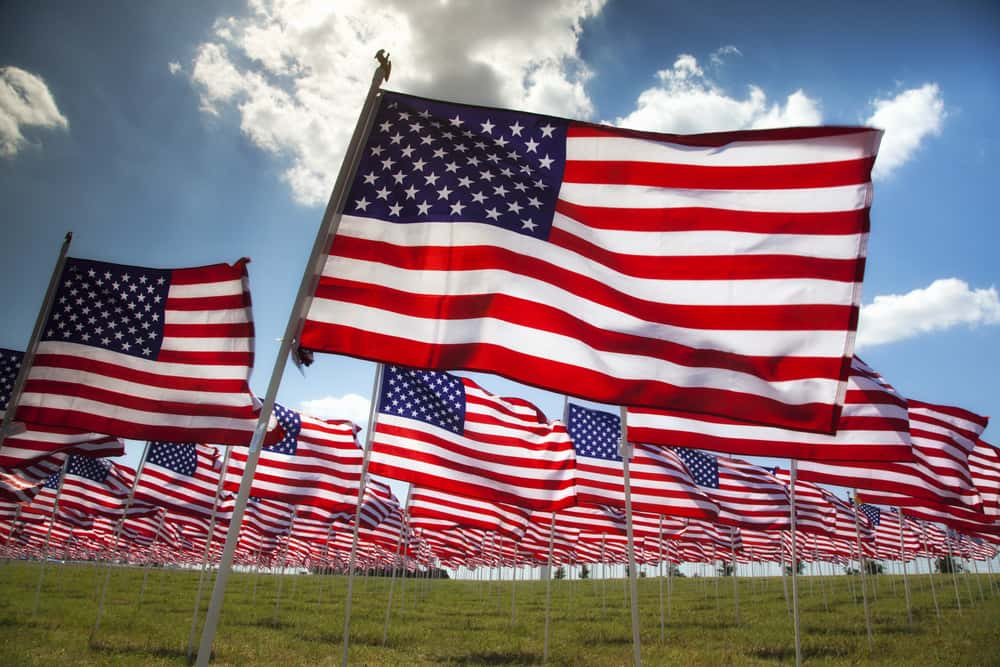 flag s day: