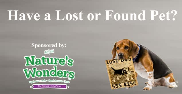Flipper Lost 7 Found Pets page