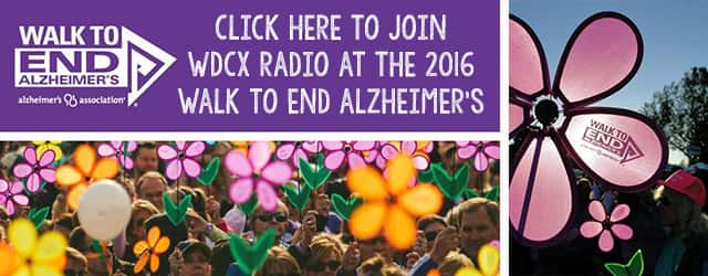 alz banner for homepage 2016 2