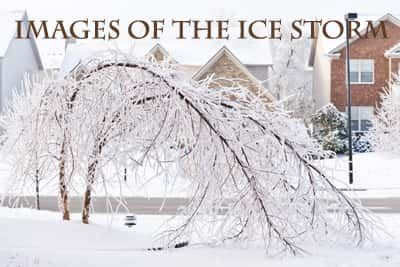Images Of The Ice Storm smaller