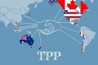 TPP-200x134