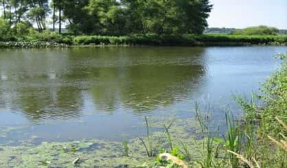 Kalamazoo Spill Settlement Renews Calls To Shut Down Line 5   News/Talk 94.9 WSJM