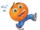 Pumpkin Race SJM
