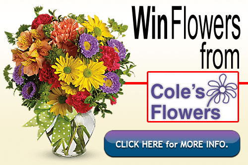 Cole's Flowers