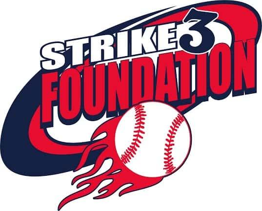 Image result for strike 3 foundation logo