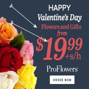 Valentine's Day ProFlowers