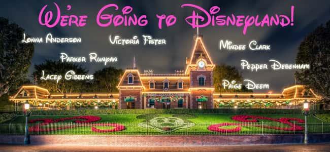 Disney Winner Flipper_edited-1
