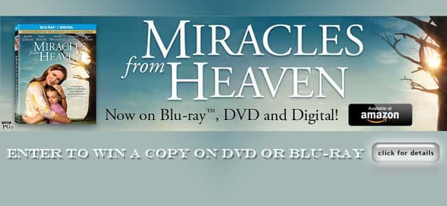Miracles Flipper copy