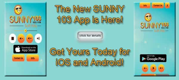 SUNNY App Flipper copy