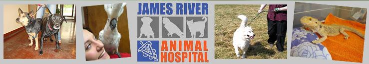 James River Vet Hosital-728