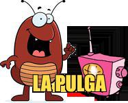 pulga(1)
