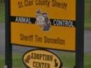 animalv-control.jpg
