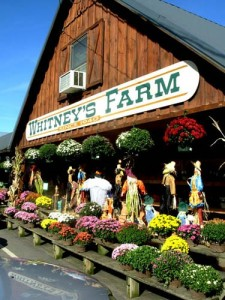 429_Whitneys-Farms-Hal298429