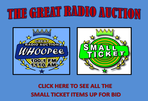 2013 SMALL TICKET ITEMS493X335